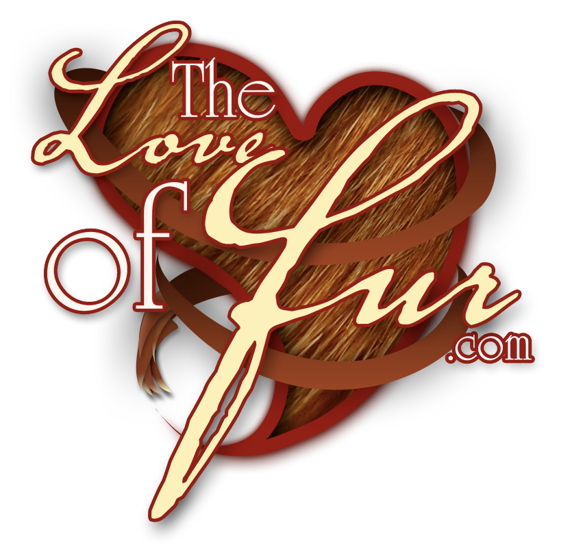 The Love Of Fur - fur fetish videos